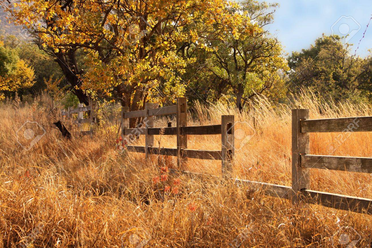 Wooden Farm Fence wooden farm fence s throughout decorating ideas