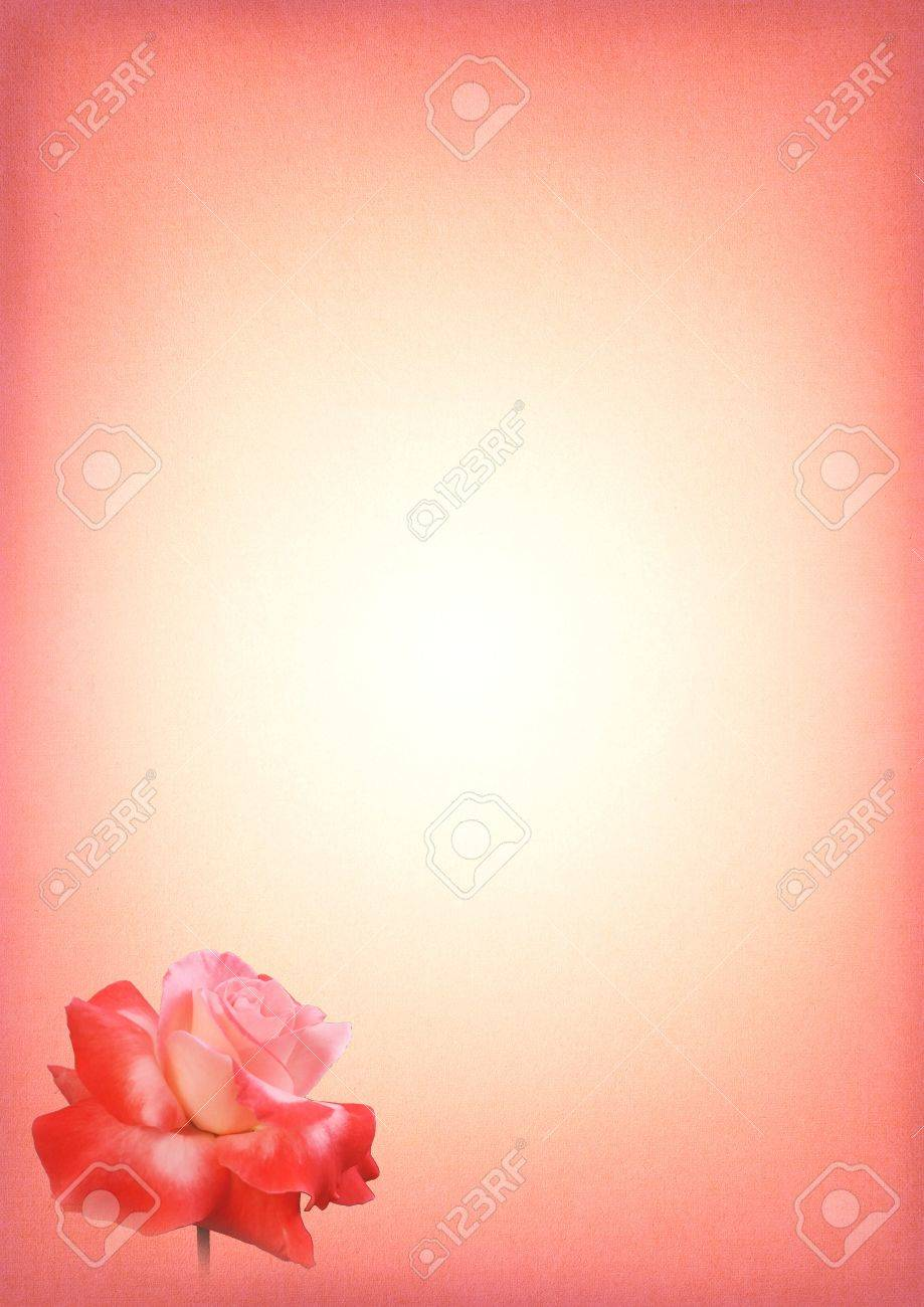 Pink Rose Print Writing Paper With Gradient And Text Area – Print Writing Paper