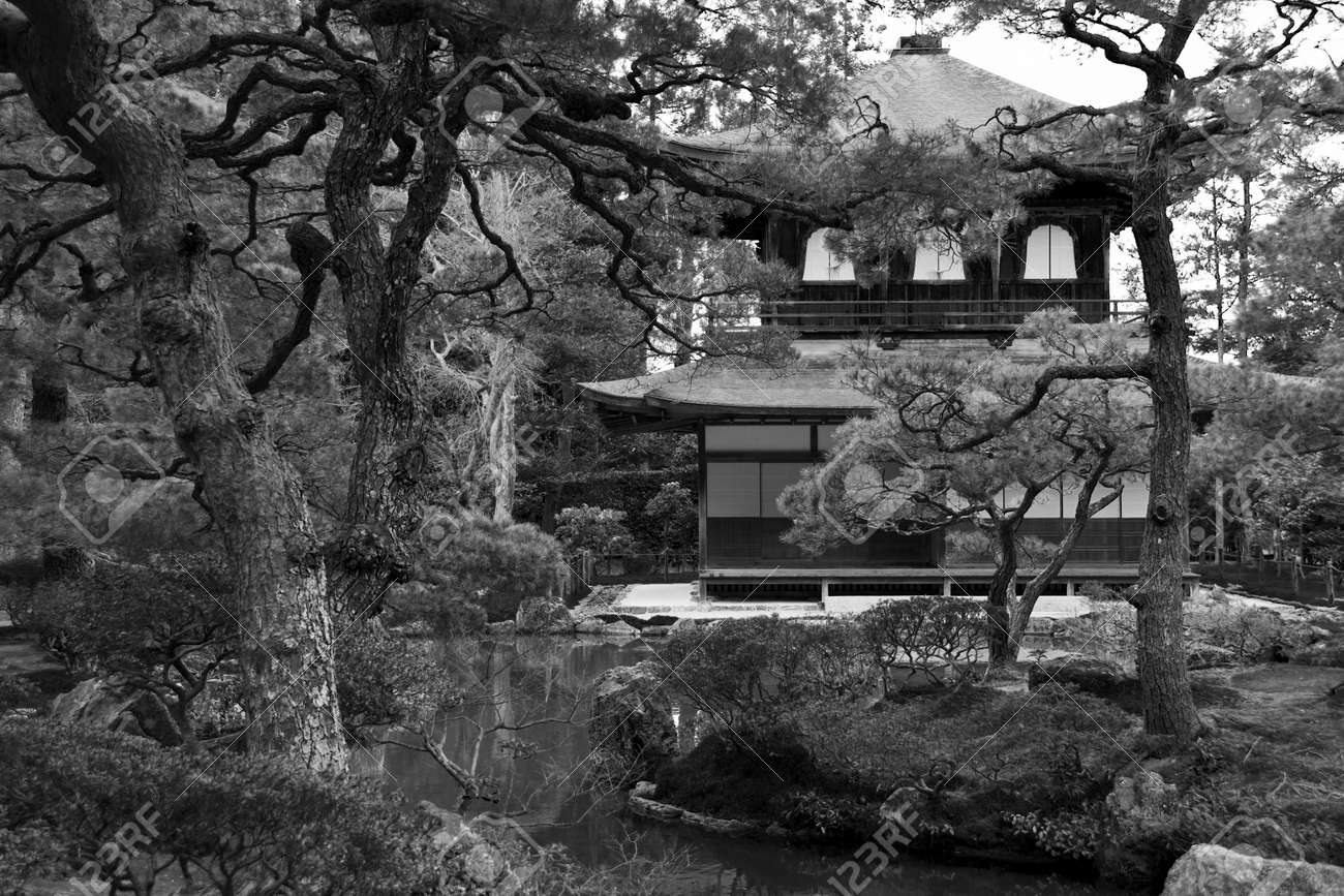 Black and white picture of temple hiden in japanese garden Stock Photo - 15207532