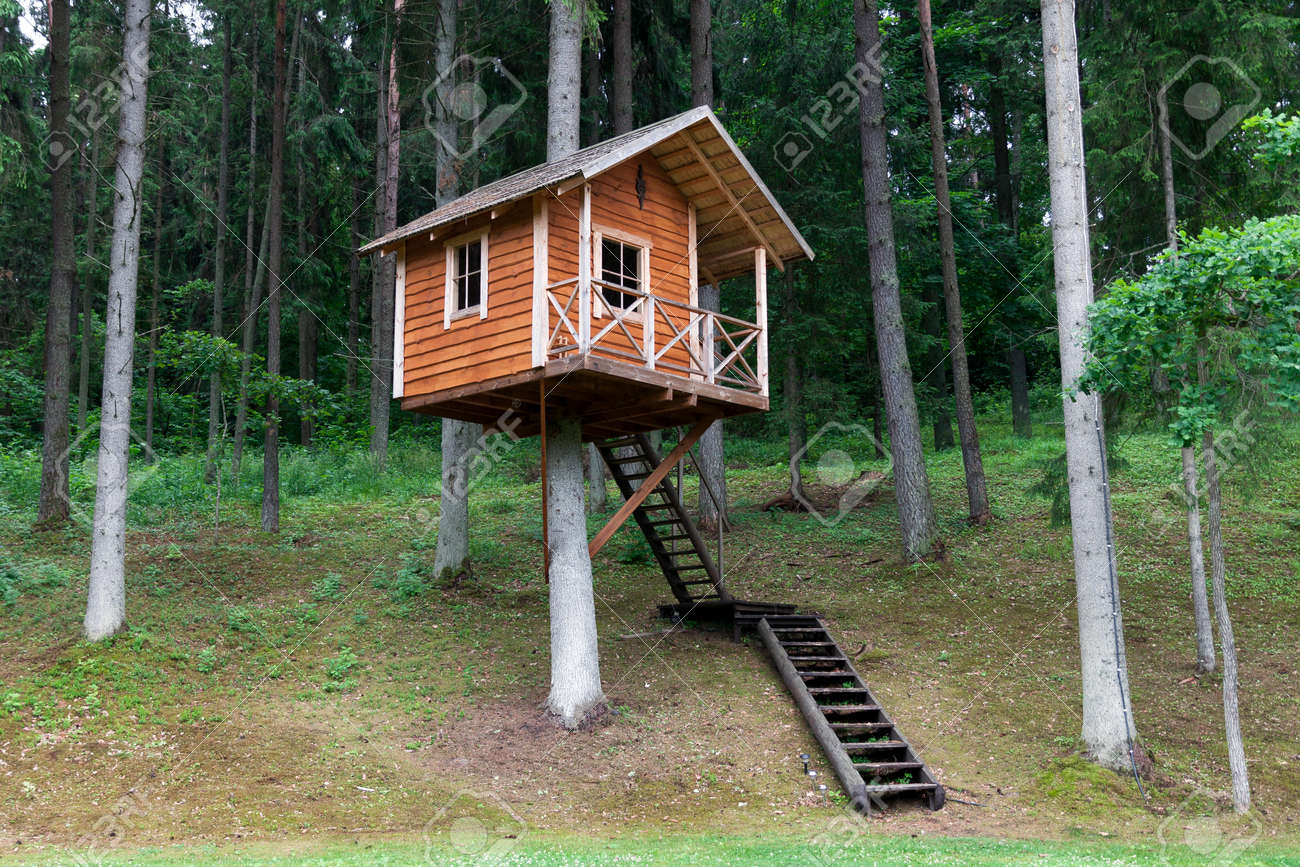 Remote wooden tree house in the forest stock photo 22188711
