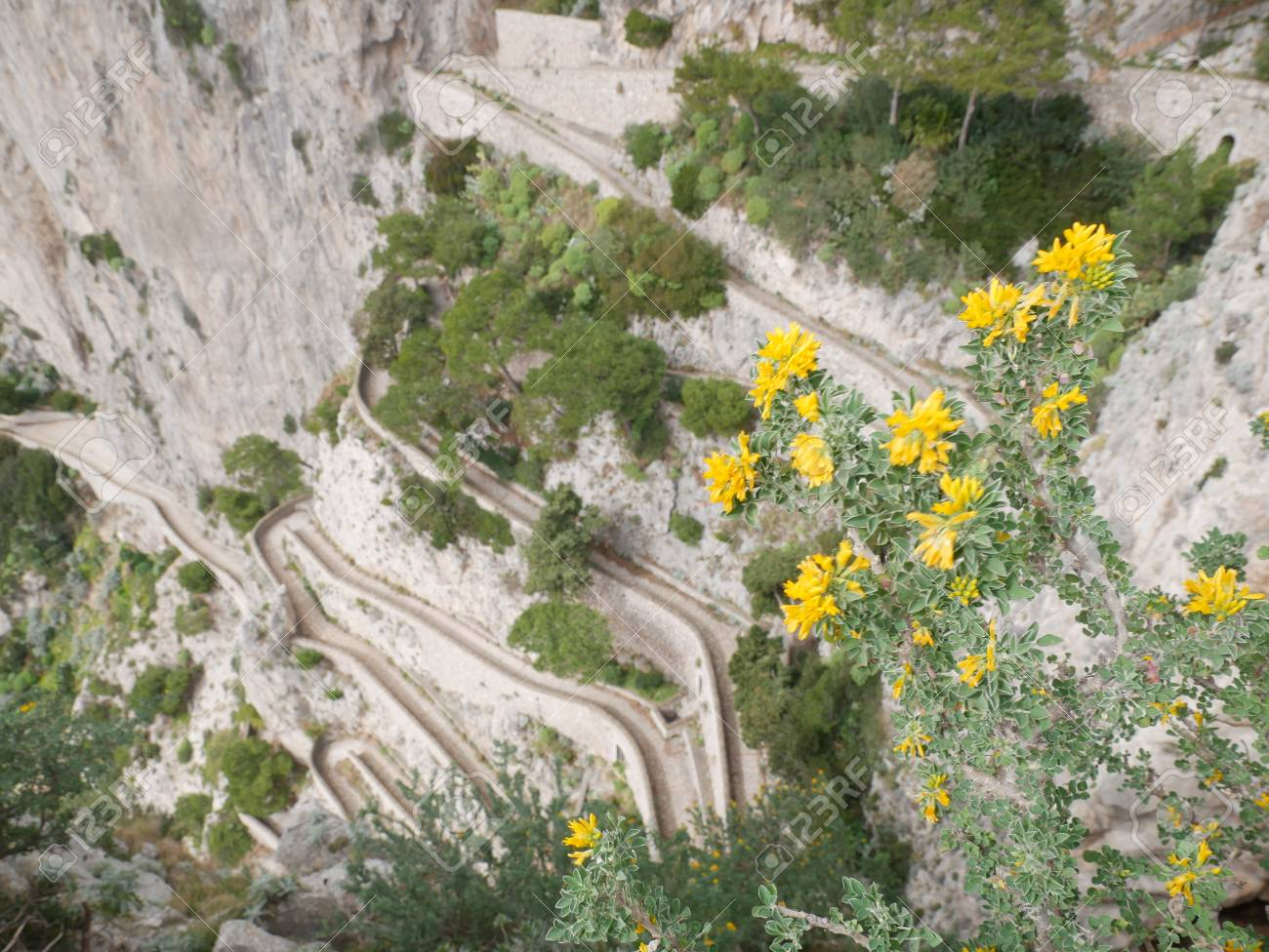 Steep Serpentine Road With Trees Shot From Above And Yellow Mountain