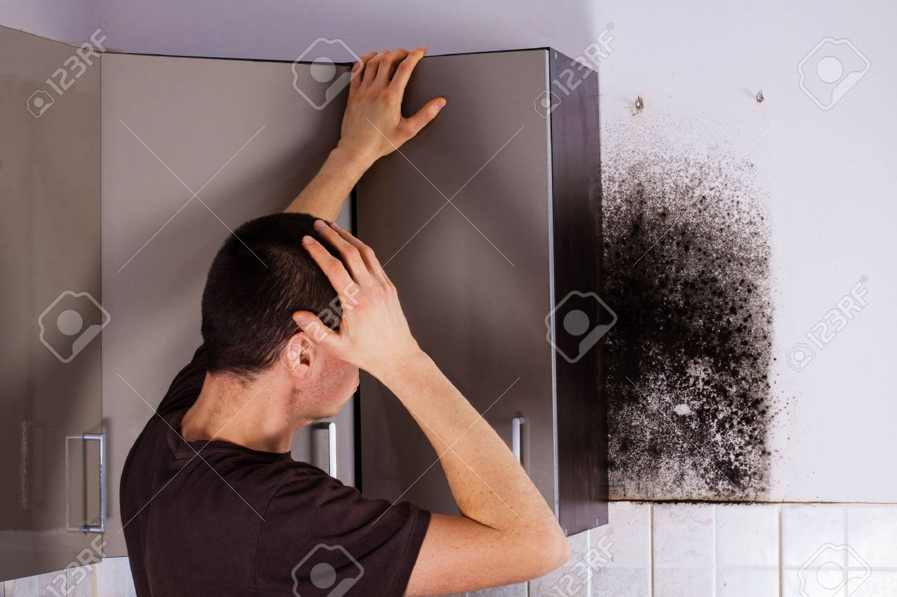 Man Shocked To Mold A Kitchen Cabinet