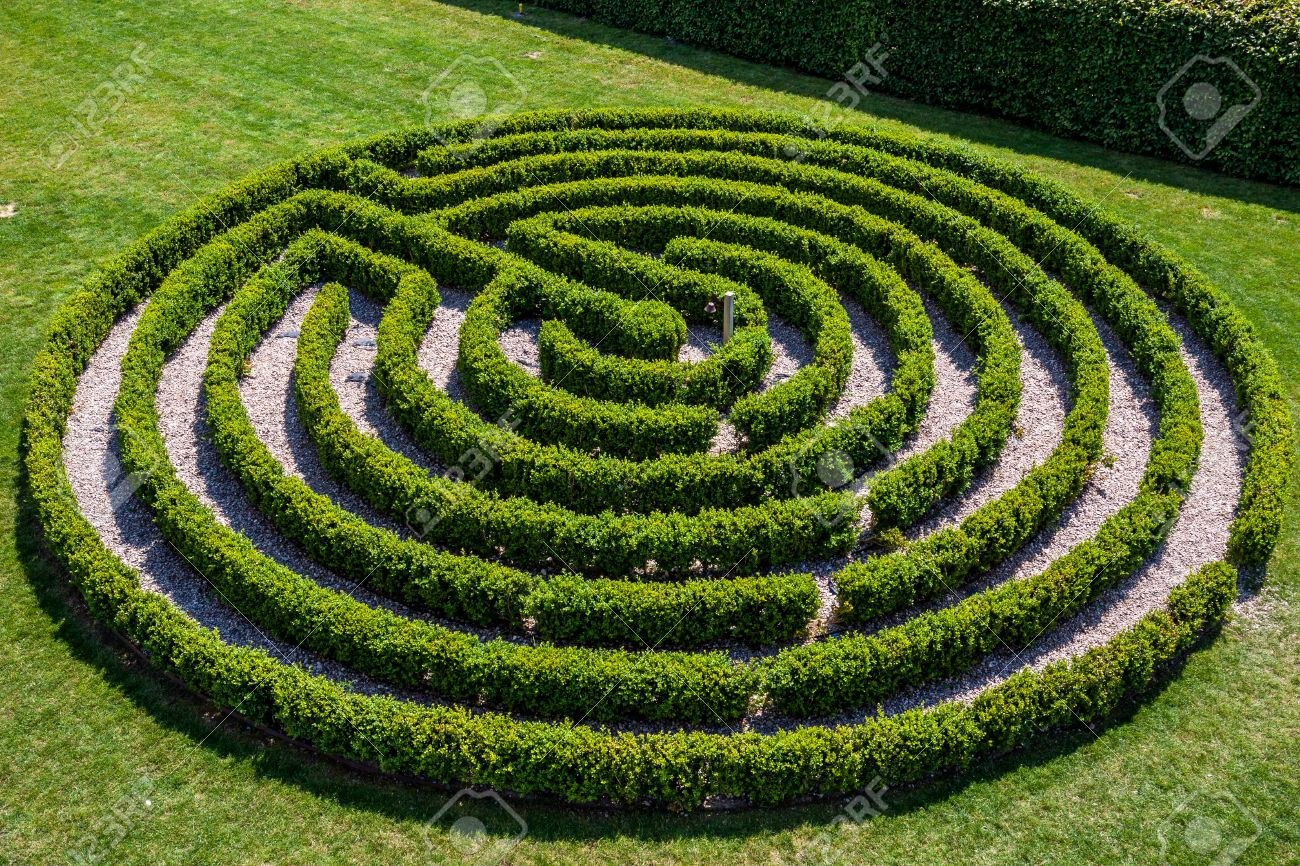 Green Bushes Circular Labyrinth, Hedge Maze. Top View. Stock Photo on