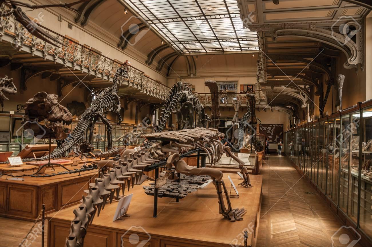 Paris, Northern France - July 10, 2017. Prehistoric Skeletons ...
