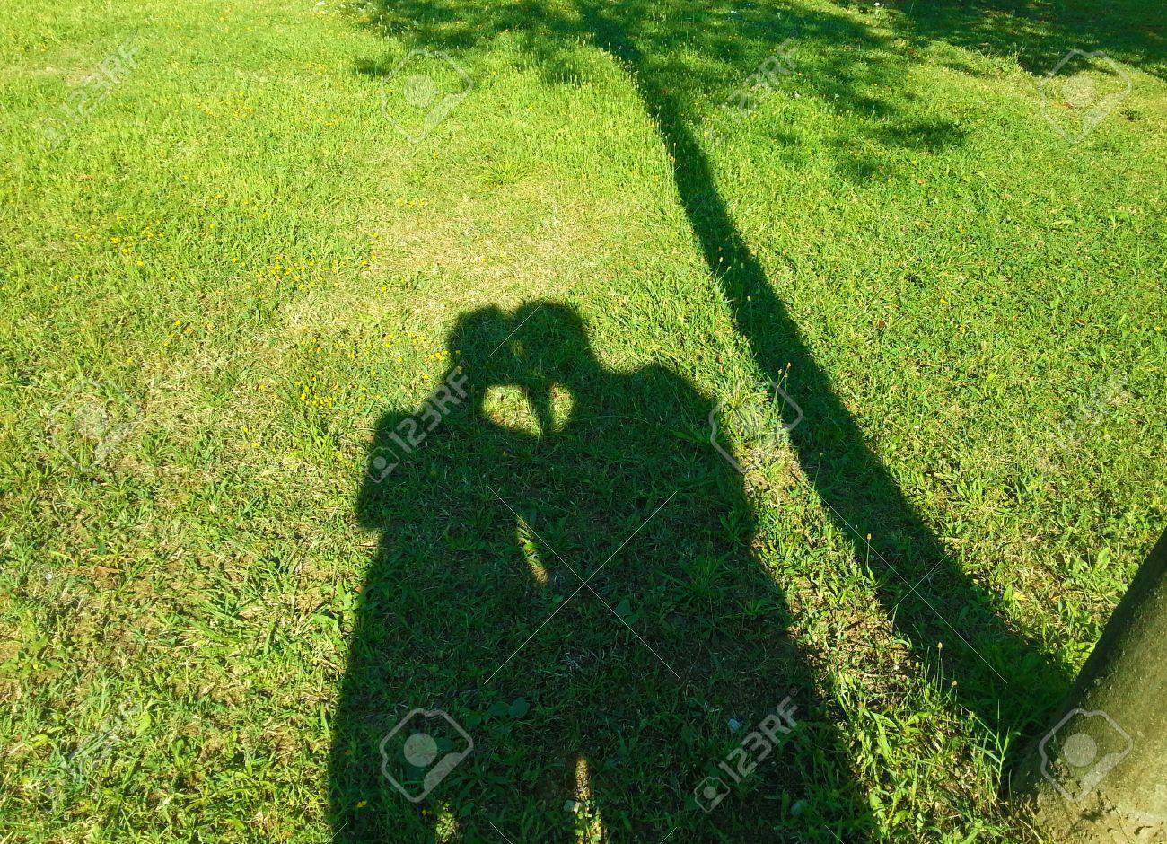Картинки тень в природе