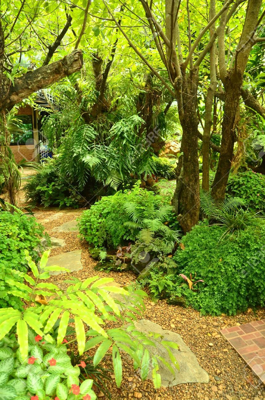 Baum Dekorieren Garten Standard Bild   87327419