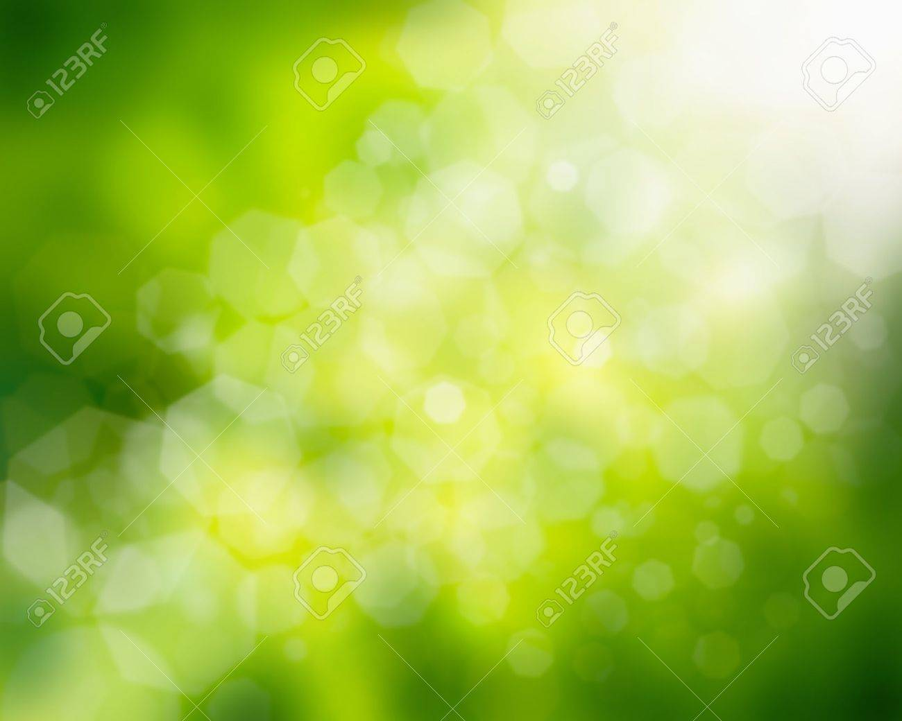 natural green background Stock Photo - 14070885