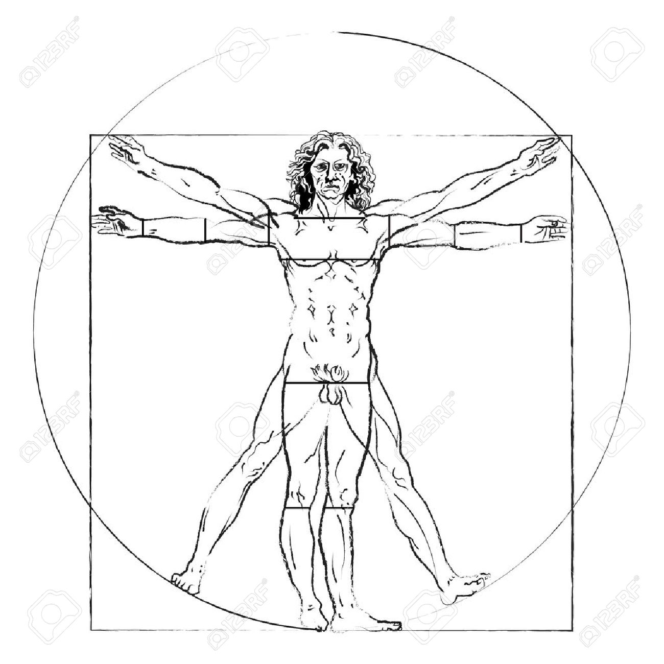 The Vitruvian Man. Leonardo Da Vinci \'s Drawing On White, Human ...