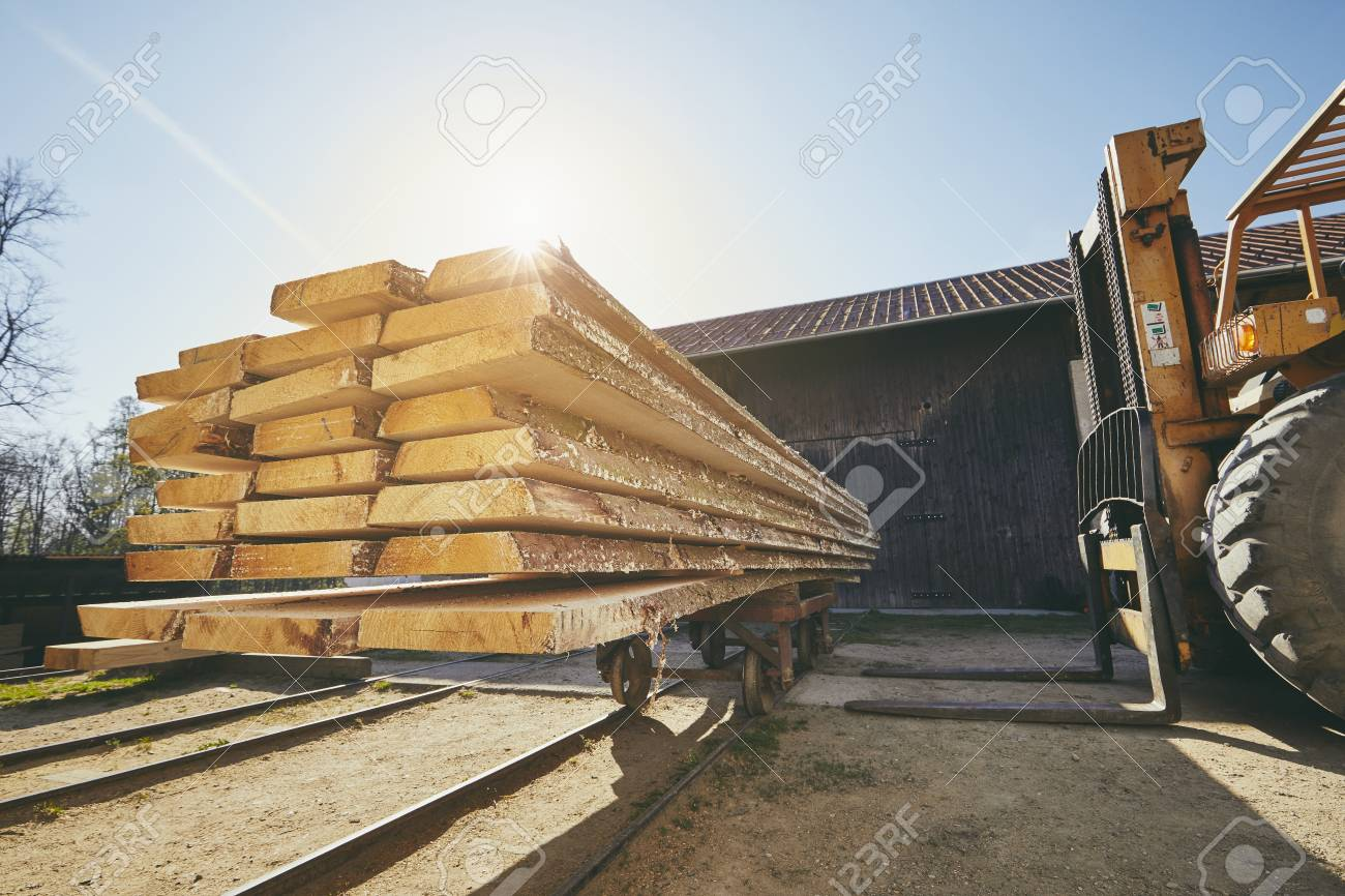 Lumber industry. Wheel loader loading planks at the sawmill at the sunrise. - 100755279