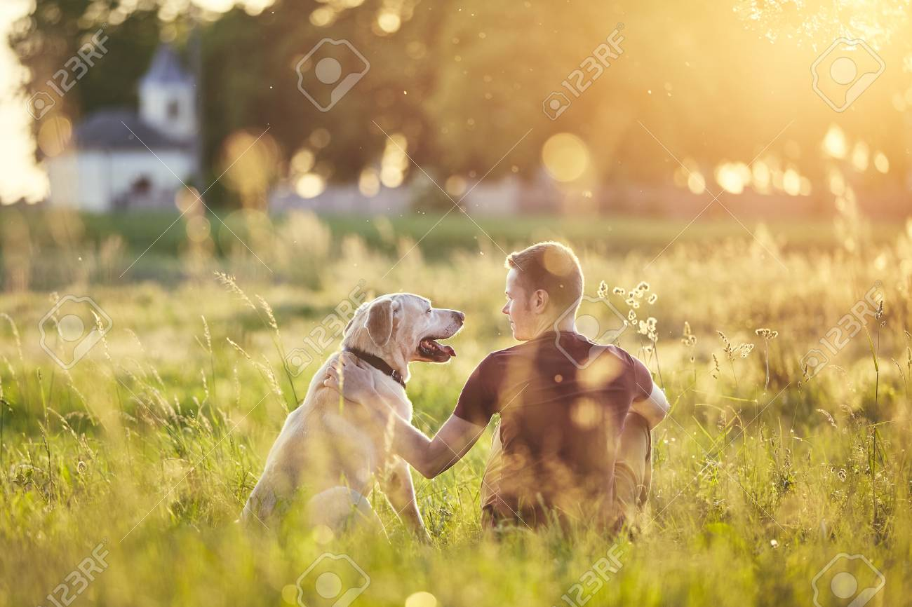 Rear view of young man with dog (labrador retriver) in nature at sunset. - 102190594