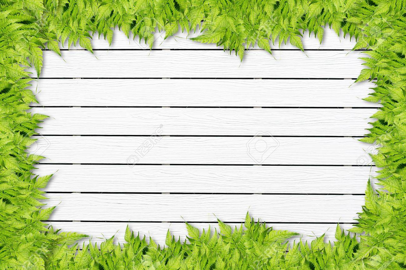 White Wooden background with green grass border Stock Photo - 15012892