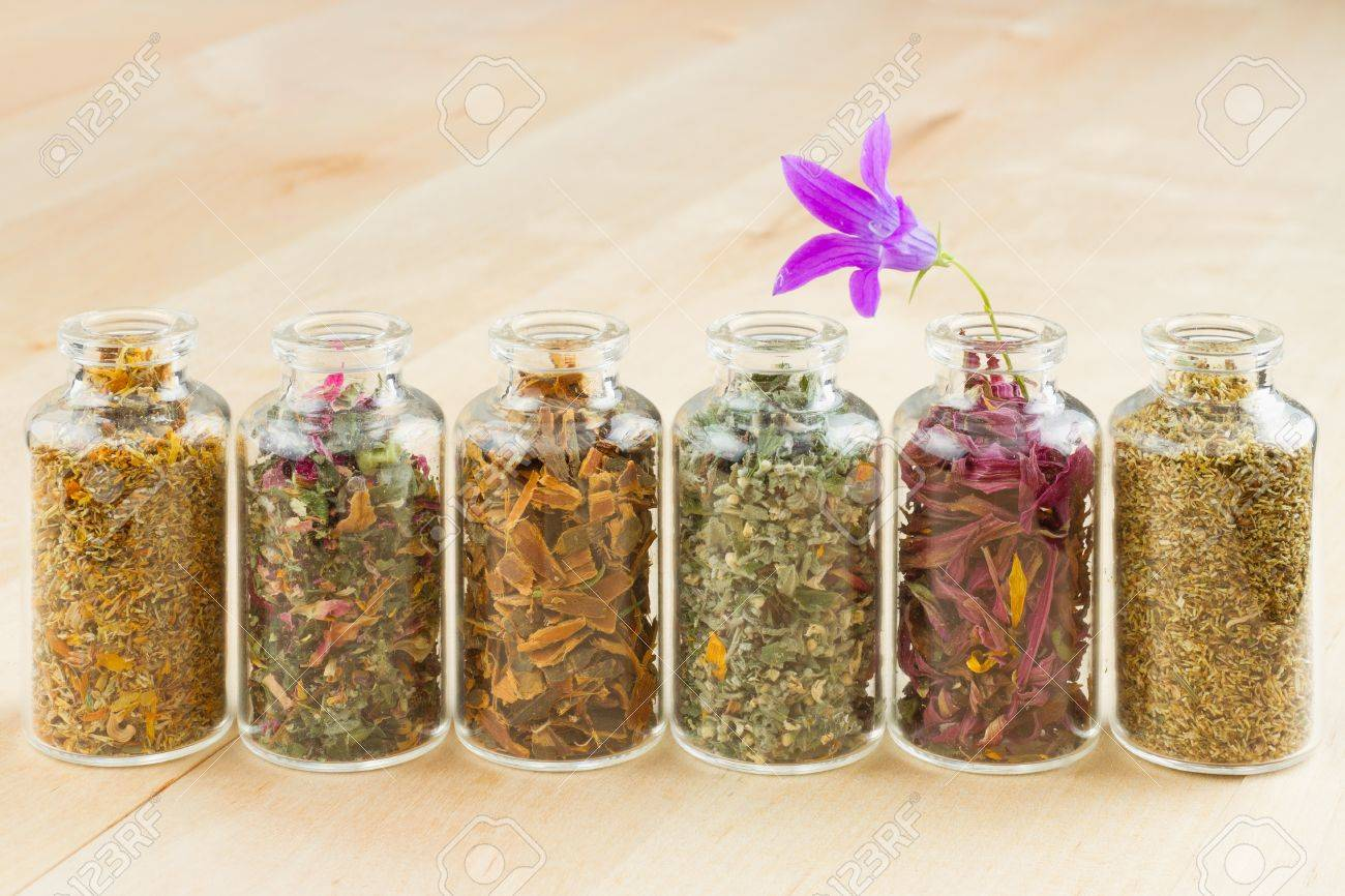 healing herbs in glass bottles, herbal medicine Stock Photo - 16508565
