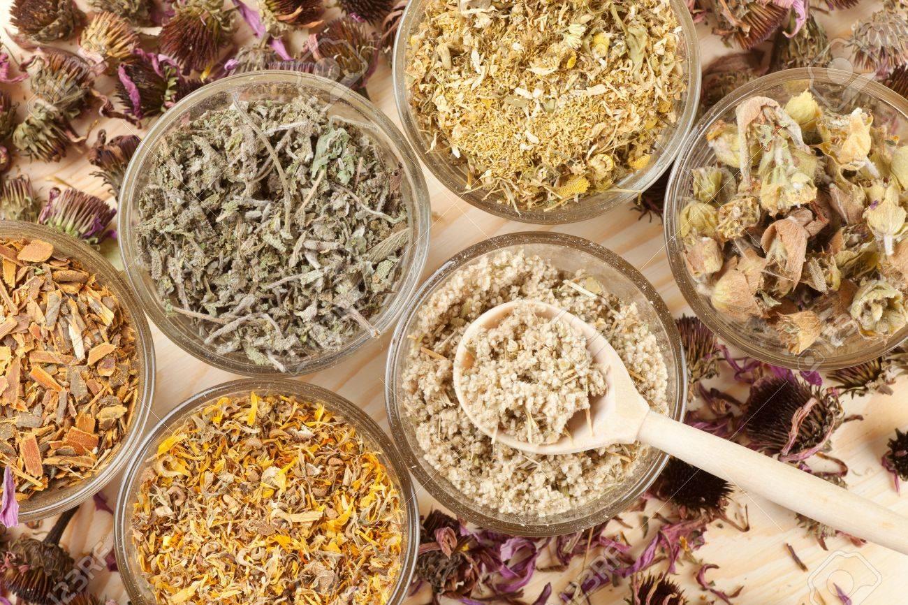 healing herbs in glass cups,top view,  herbal medicine Stock Photo - 18435248
