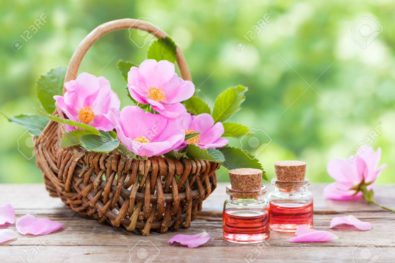 Rustic wicker basket with pink rose hip flowers and bottles of essential roses oil. - 41030658