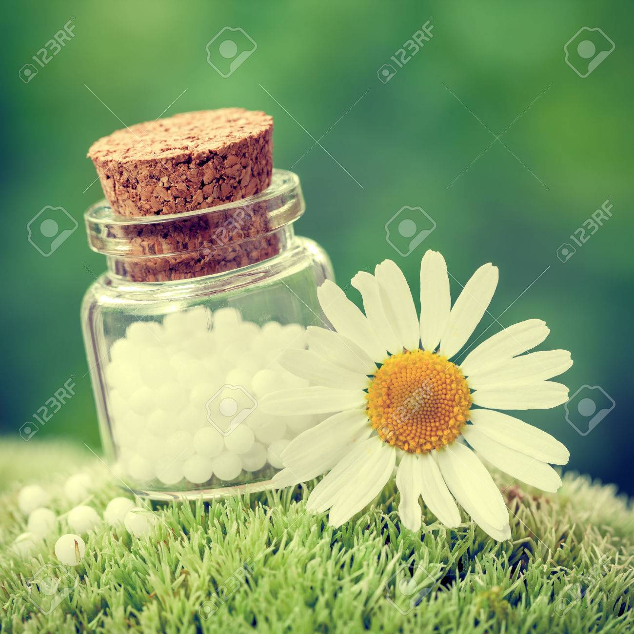 Bottle of homeopathy globules and daisy flower on green moss bottle of homeopathy globules and daisy flower on green moss retro styled stock photo izmirmasajfo Gallery