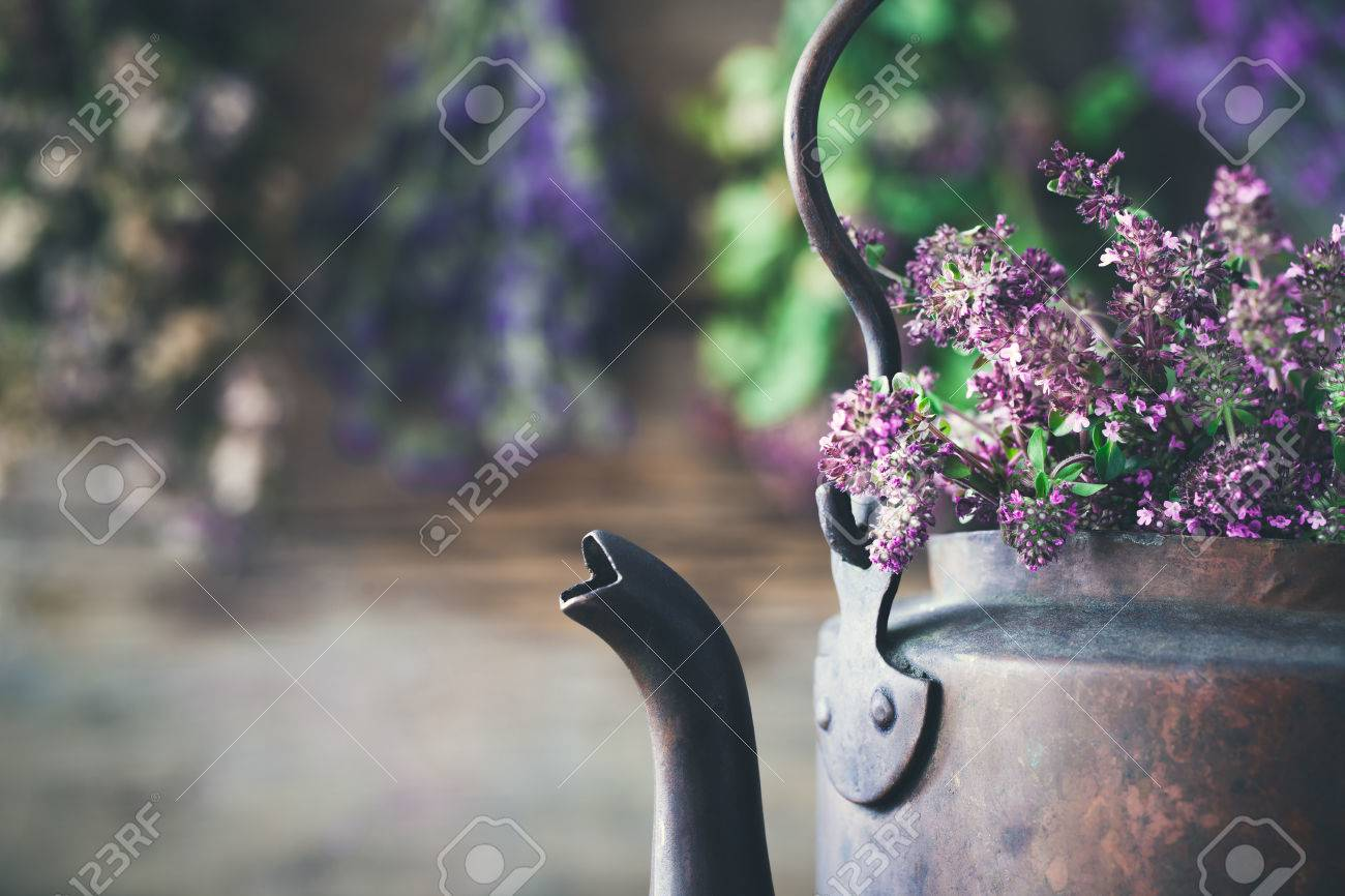 Vintage Rustic Tea Kettle Full Of Thyme Flowers For Healthy Herbal