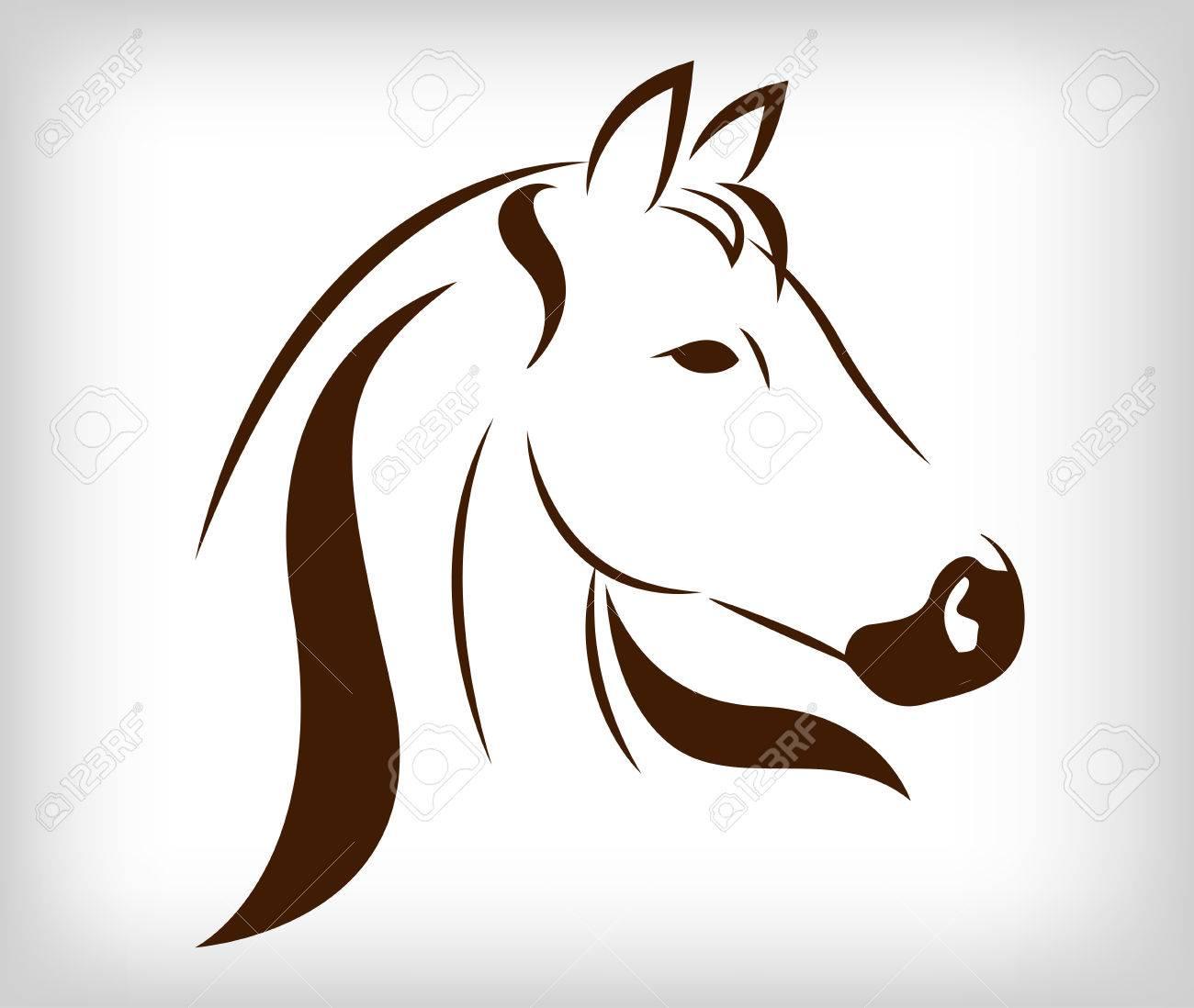 Vector head of horse - 24527393