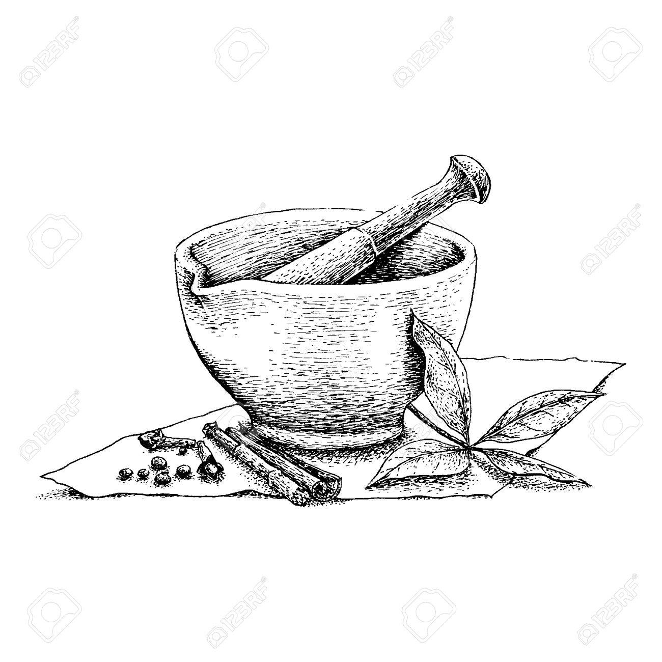 Mortar And Pestle Vintage Line Drawing Royalty Free Cliparts ... for Mortar And Pestle Drawing  15lptgx