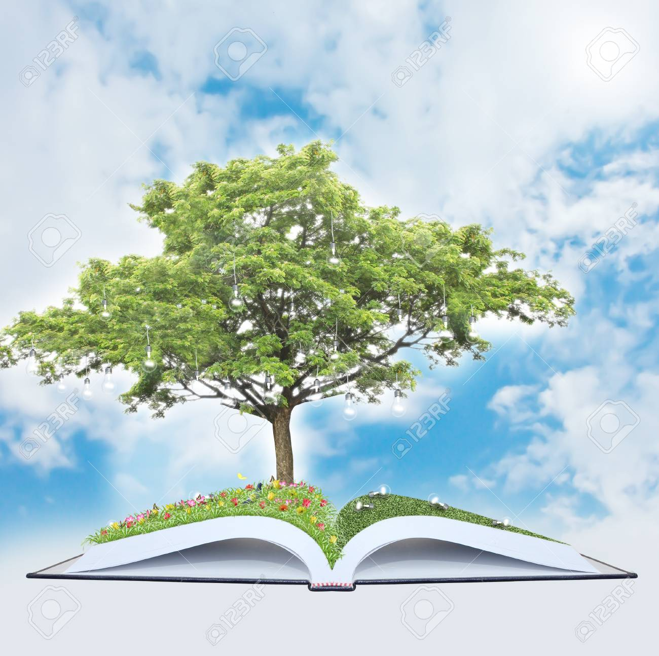 Tree of wisdom Stock Photo - 12685633
