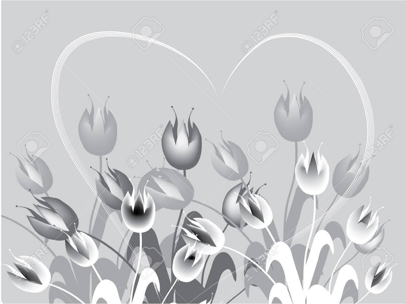 field of gray tulips Stock Vector - 6612028
