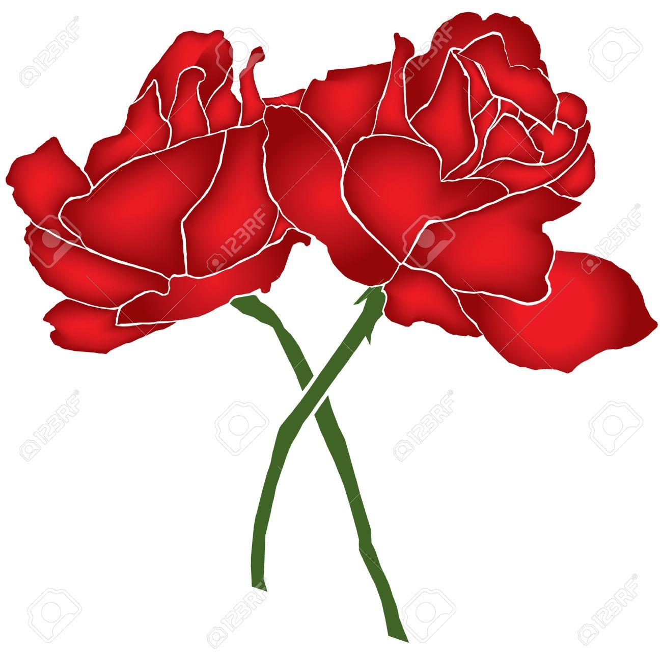 Elegant Red Roses Symbol Of Love For Your Design Royalty Free