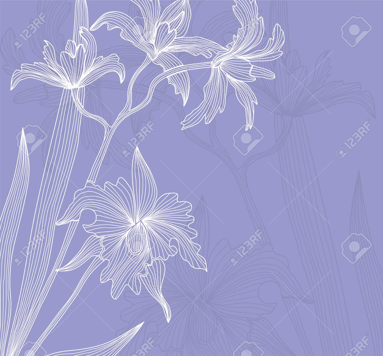 elegant floral invitation with abstract orchid flowers for your design Stock Vector - 18149517