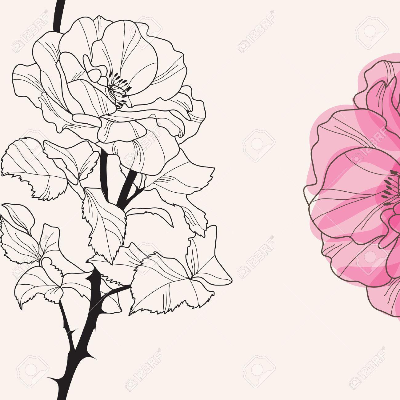 elegant floral invitation with hand drawn decorative rose Stock Vector - 20452057