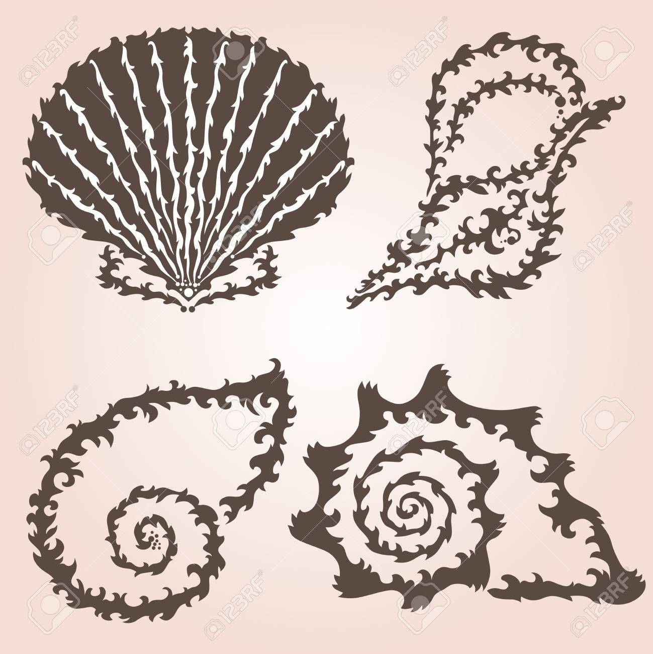 Seashells Design Sea Round Banner Colorful Vector
