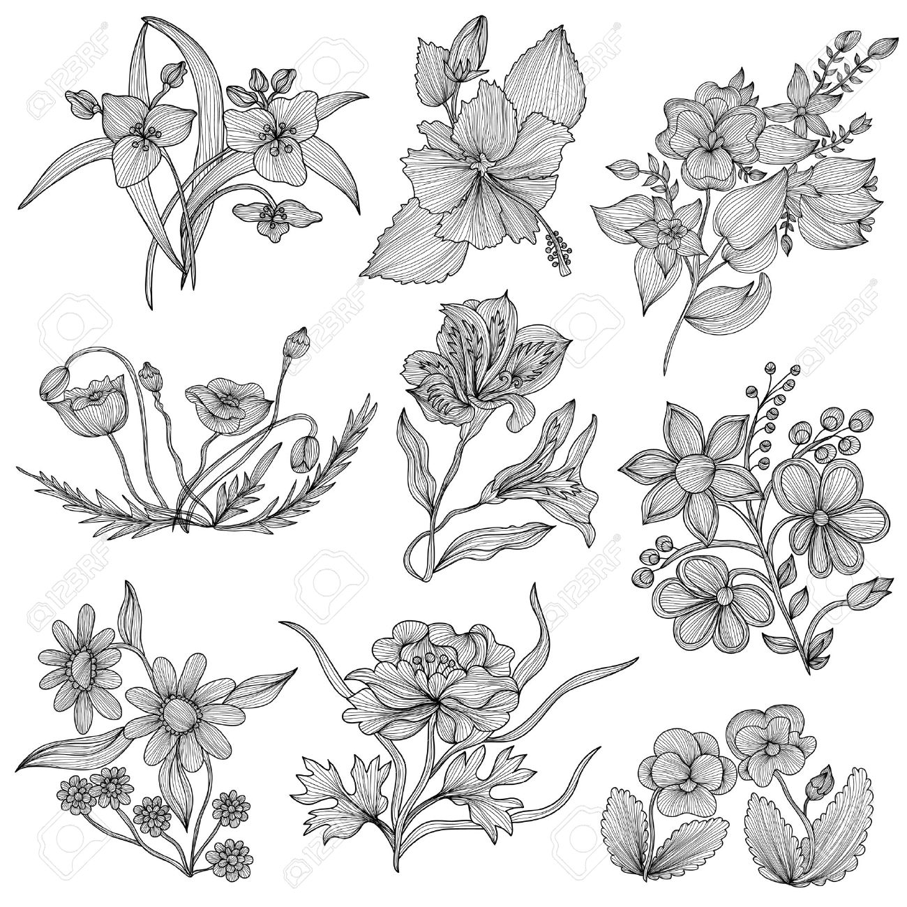 Set Of 9 Elegant Decorative Flowers Design Elements Floral