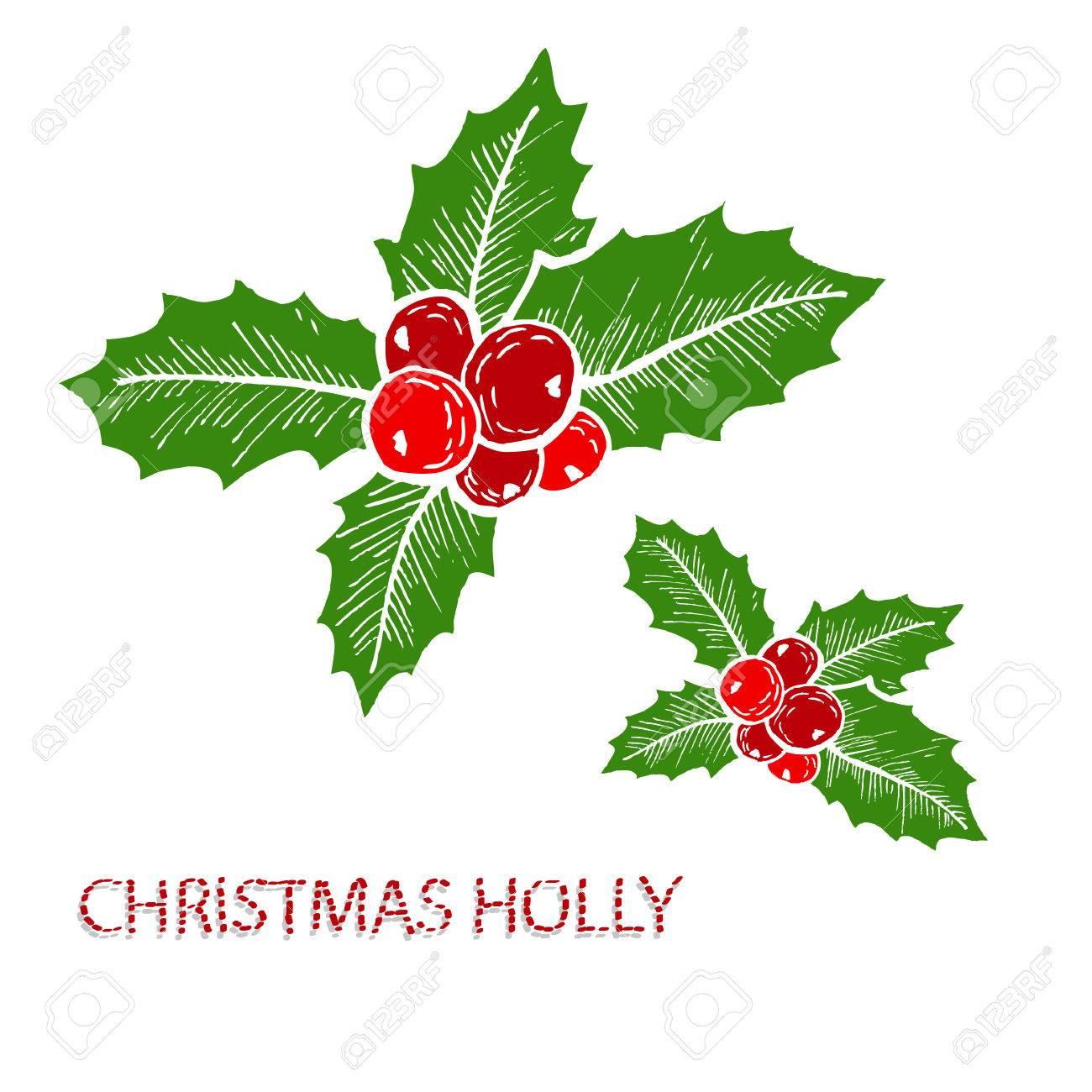 Immagini Agrifoglio Di Natale.Decorazioni Di Agrifoglio Di Natale Decorativi Disegnati A Mano Elementi Di Design Puo Essere Utilizzato Per Carte Inviti Carta Da Regalo Stampa