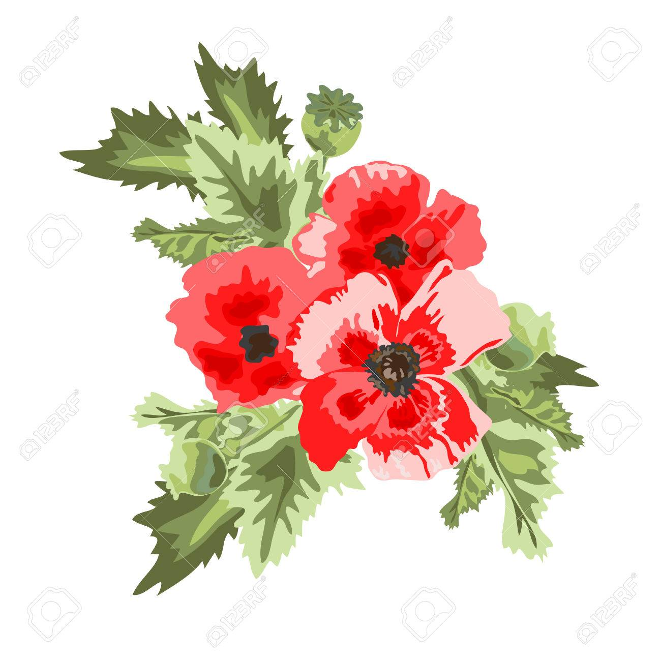 Elegant Bouquet With Red Poppy Flowers Design Element Can Be