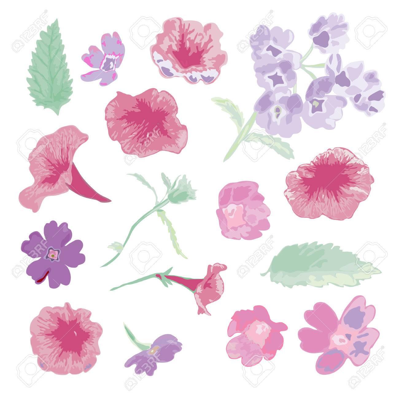 Flores Elegantes Decorativos Vector Y Las Hojas De Estilo De Acuarela Elementos De Diseño Decoraciones Florales Para Las Invitaciones De Boda