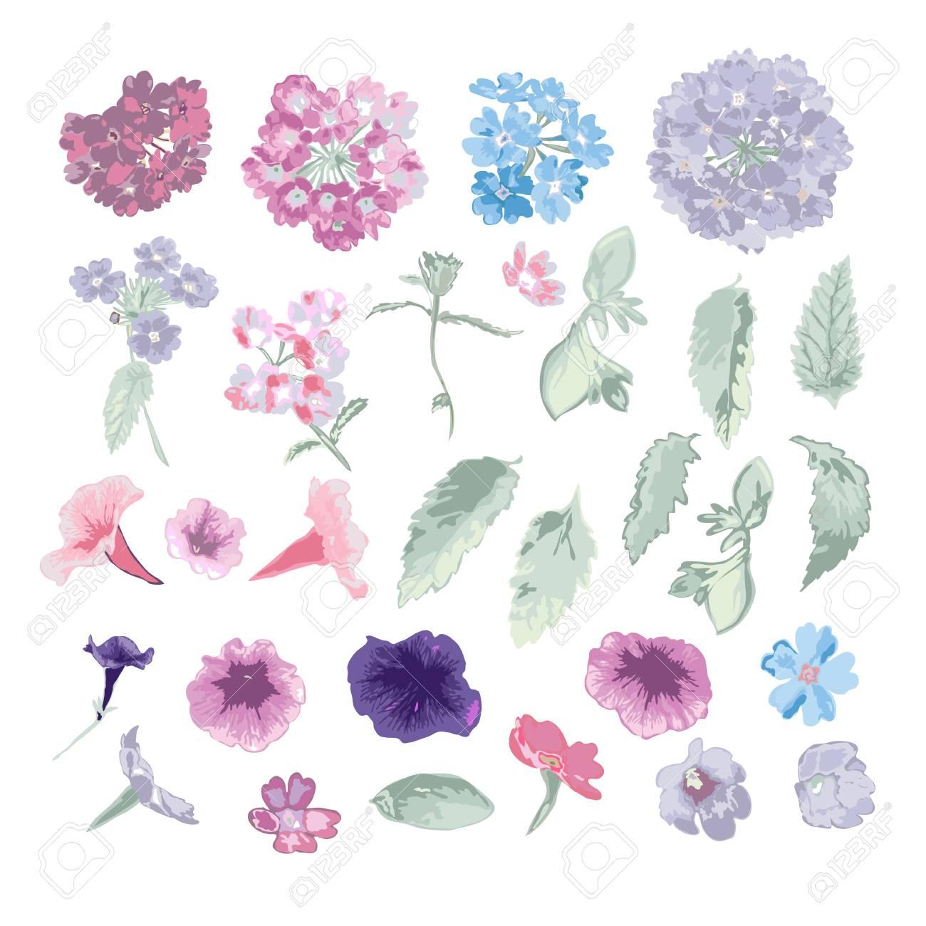Elegantes Flores Decorativas Y Hojas Elementos De Diseño Ramas Florales Decoraciones Florales Para Invitaciones De Boda Vintage Tarjetas De