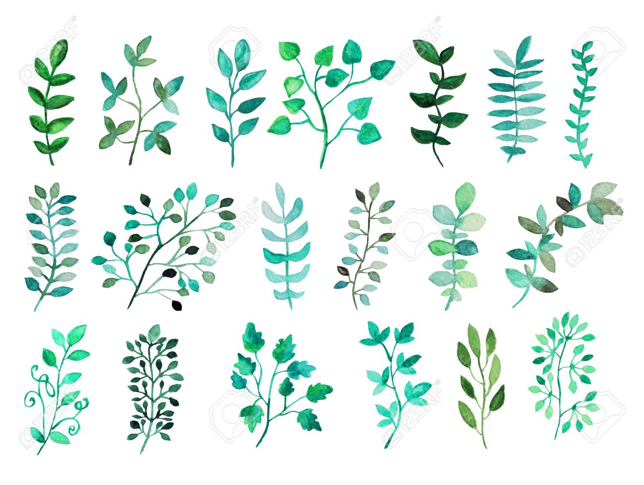 Decorative Watercolor Leaves Clipart, Design Elements. Can Be ...