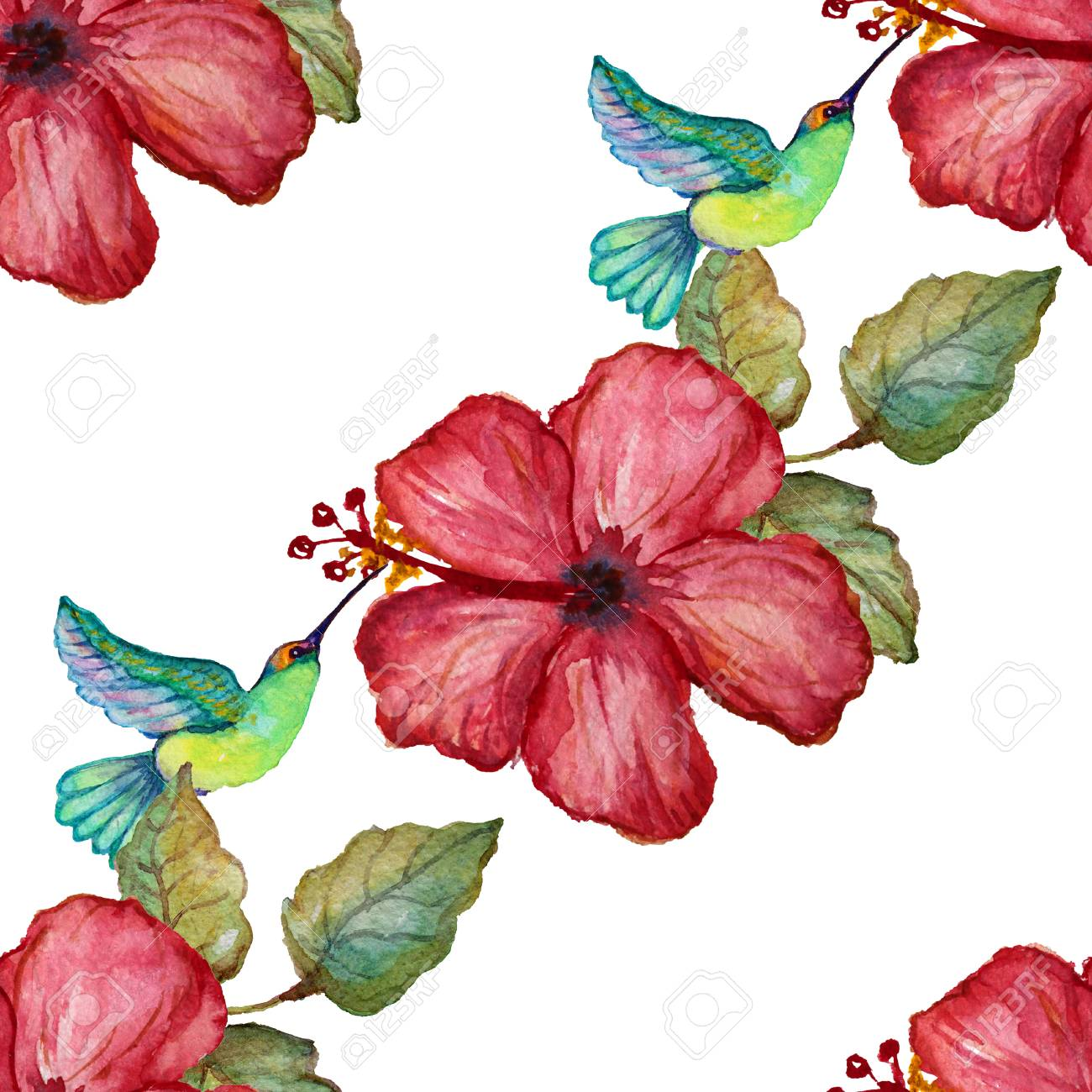 Elegant Seamless Pattern With Watercolor Colibri And Hibiscus