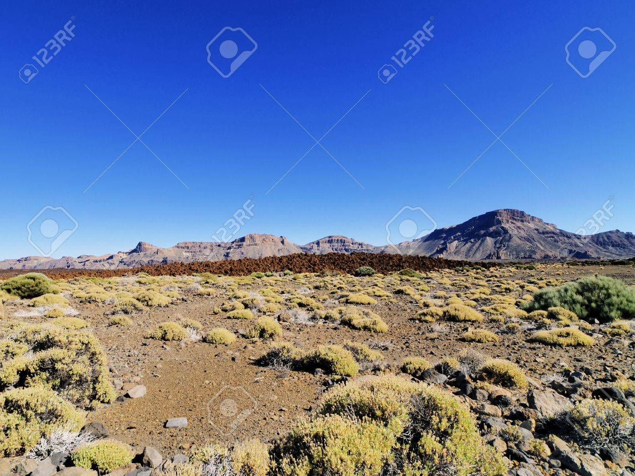 Teide National Park, Tenerife, Canary Islands, Spain Stock Photo - 16679255