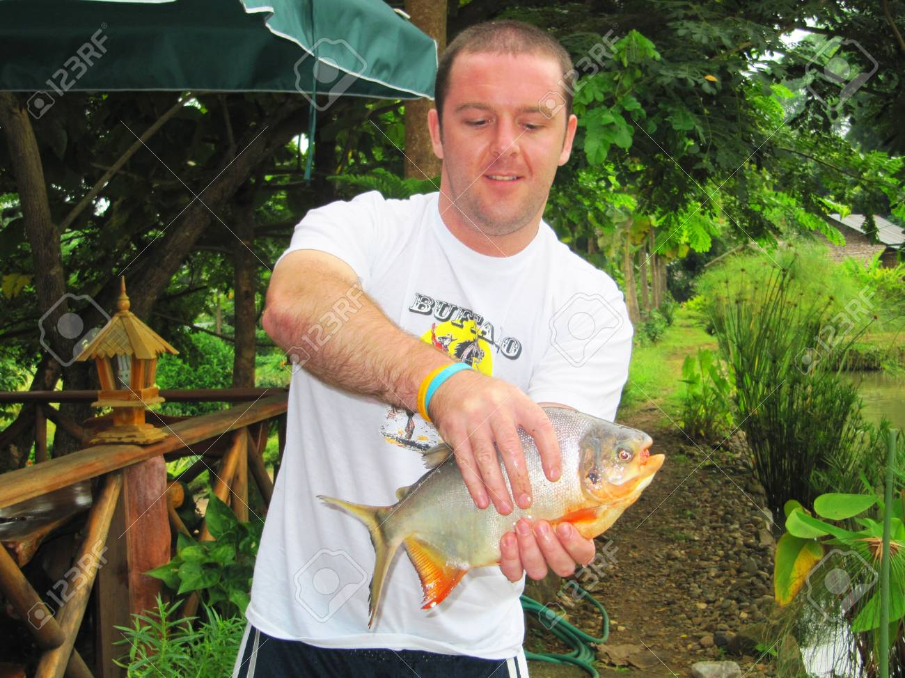 Man holding a live caught fish in Thailand                                        Stock Photo - 13714806