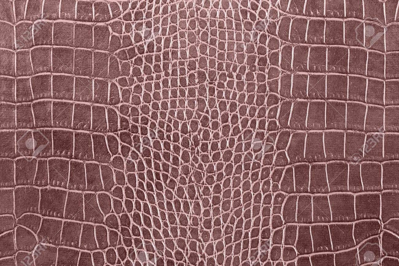 Brown Crocodile Skin Texture As A Wallpaper Stock Photo