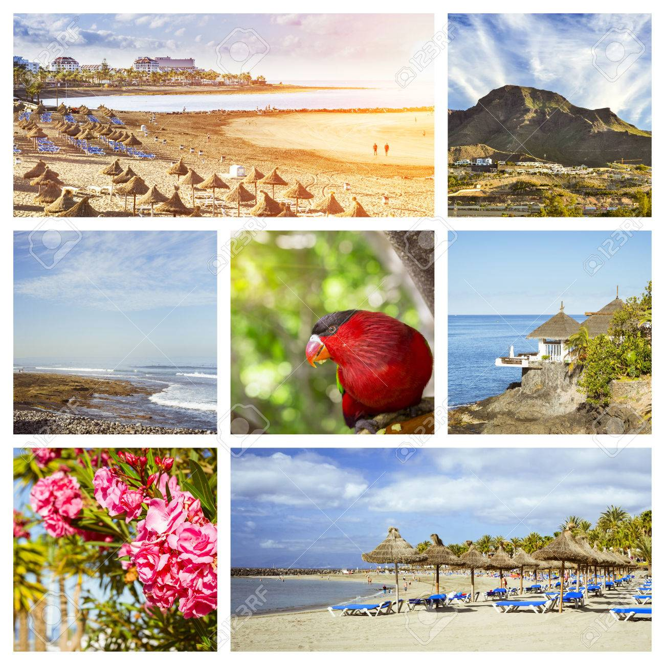 Sunny summer beach travel vacation  Collage with popular types
