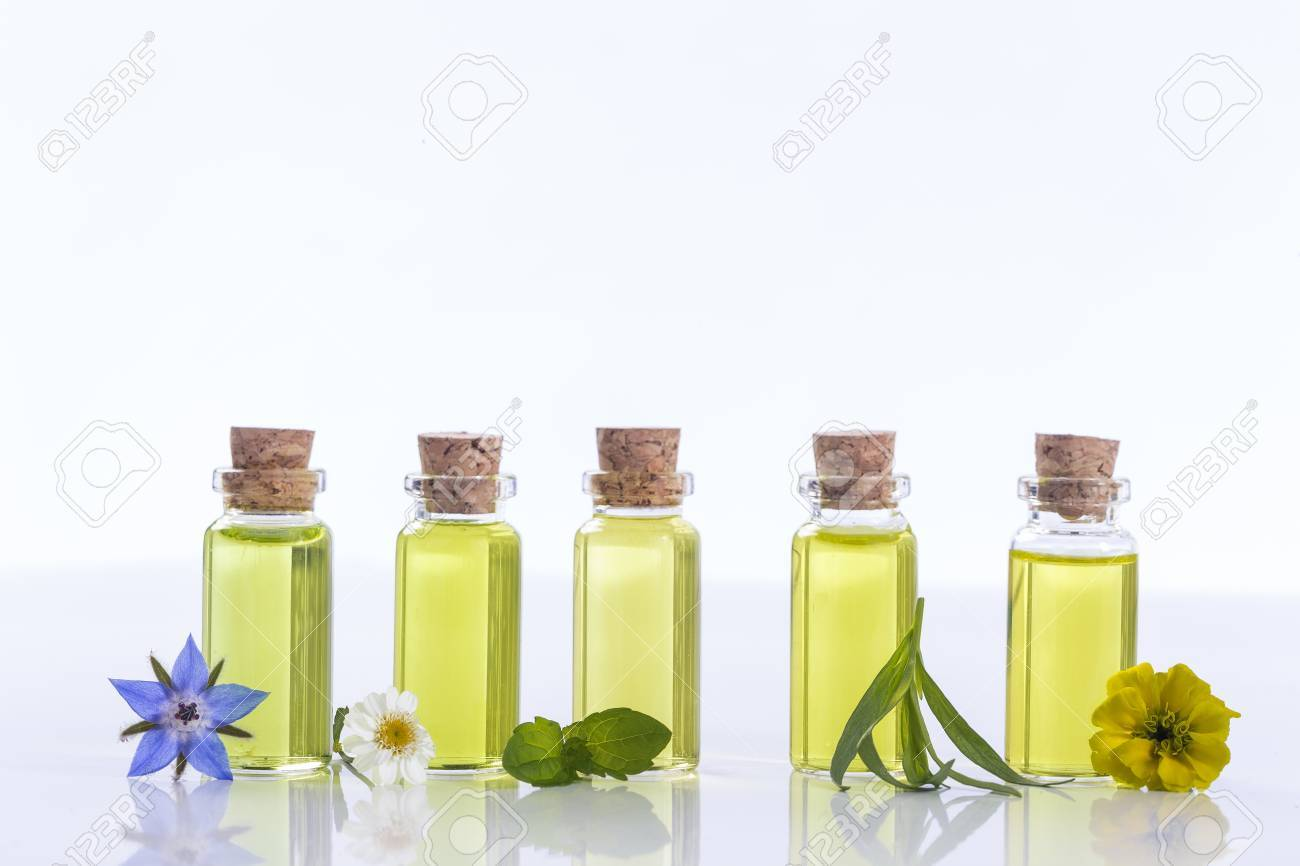 essential oils and medical flowers herbs on white - 62013004