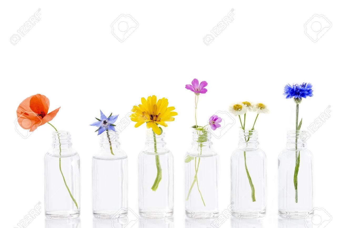 herbal medicine flowers in bottles for herbal medicine on white - 82813621