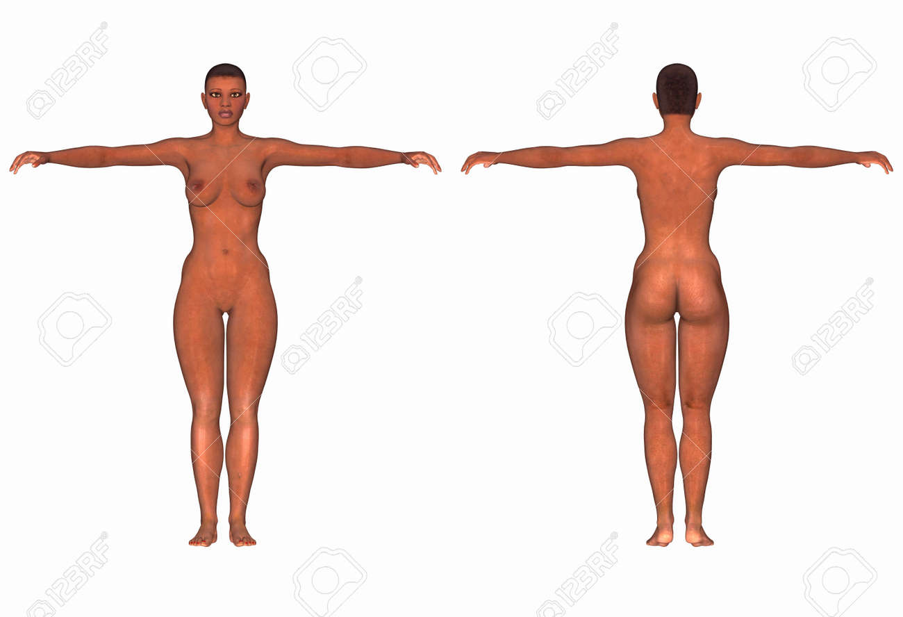 Female Human Body Front And Back