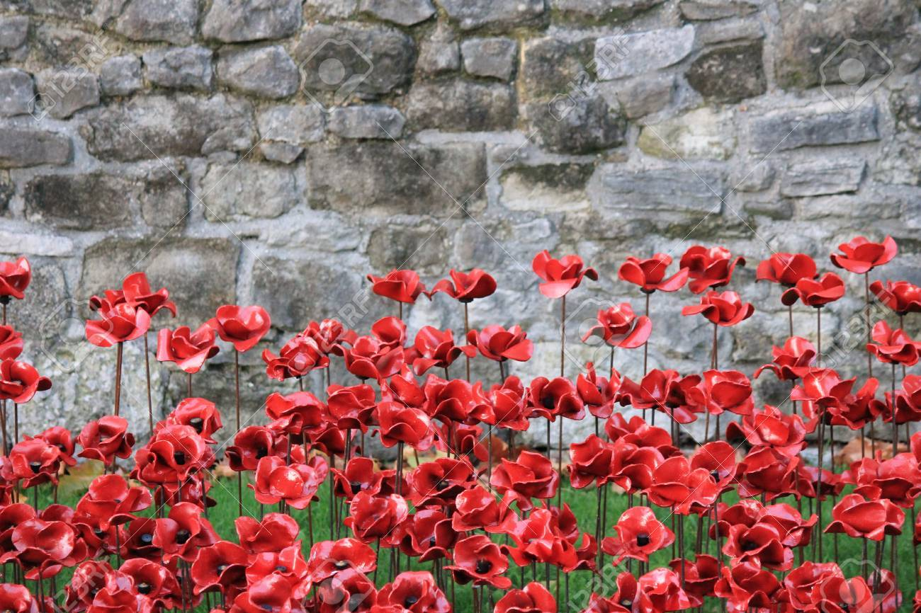 London Uk 13 August 2014 Poppies At The Tower Of London For