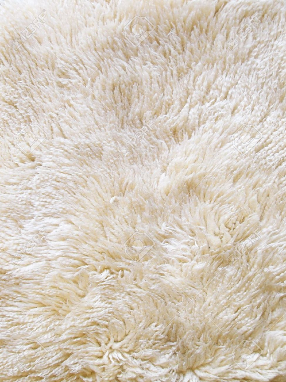 The wool texture of a fluffy sheepsking rug Stock Photo - 8071258