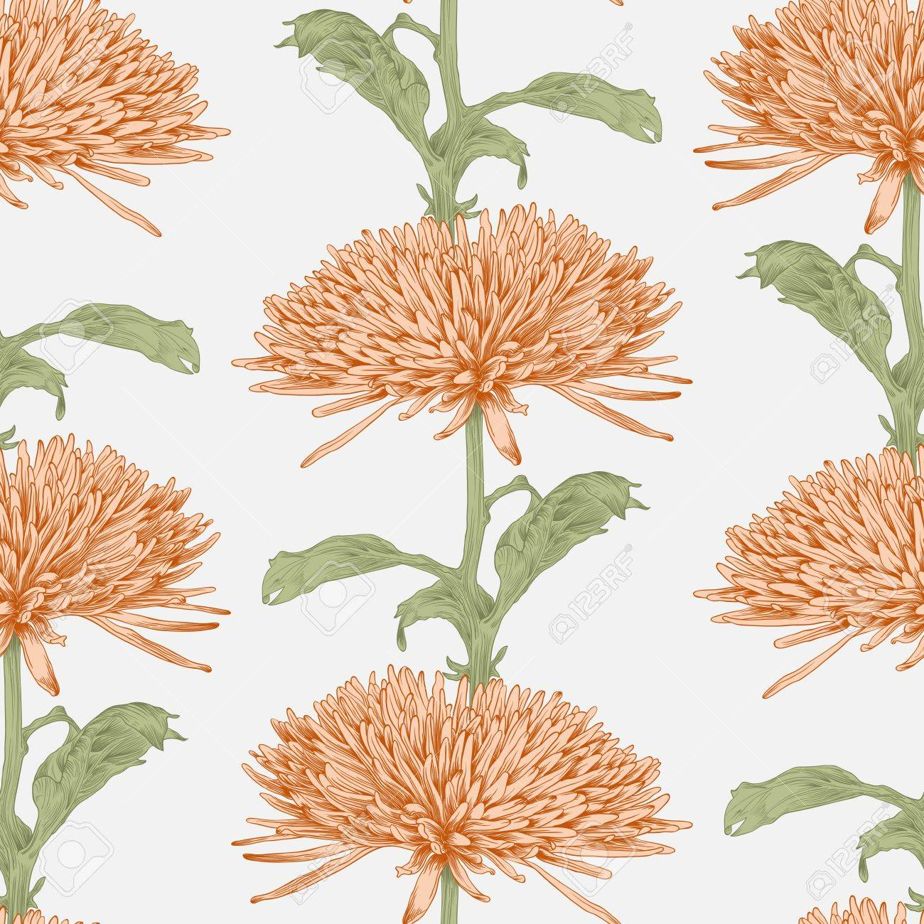 illustration seamless background with chrysanthemum Stock Vector - 15939306