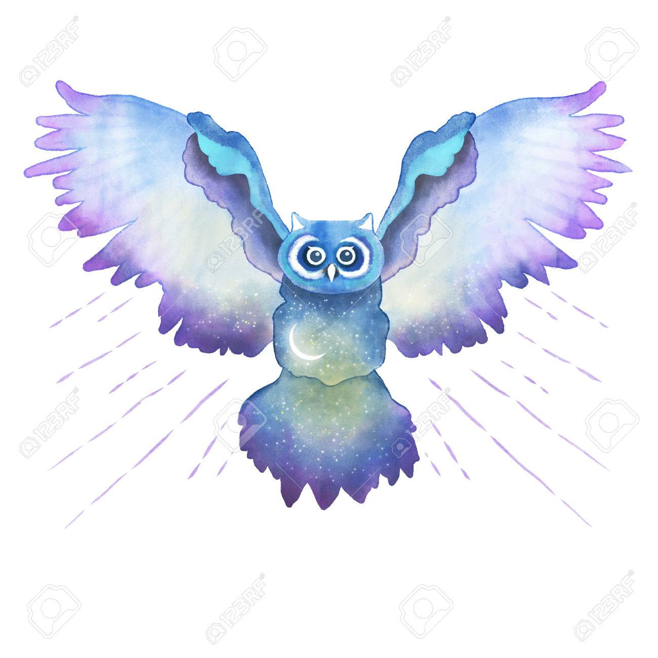 Shirt design resolution - Watercolor Owl Illustration In High Resolution T Shirt Fresh Design Stock Illustration