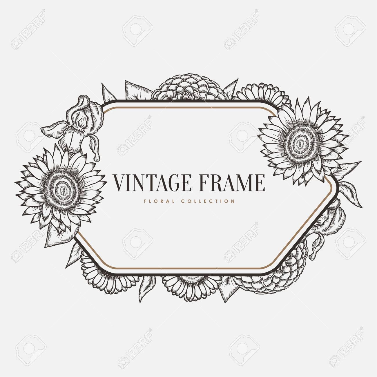 4b74f9f5acf24 Foto de archivo - Marco floral del vector de la vendimia. Retro estilo de  ilustración gráfica. Elemento de diseño para tarjetas de felicitación