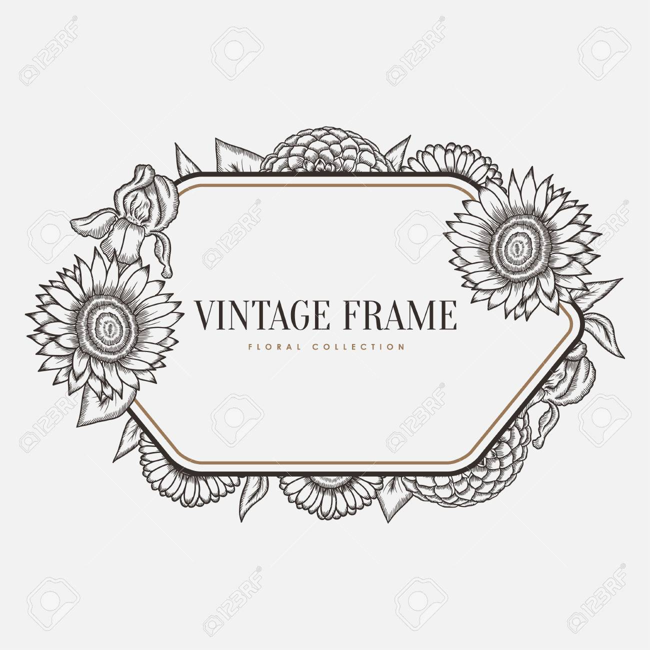 Vector Floral Vintage Frame. Retro Style Graphic Illustration ...