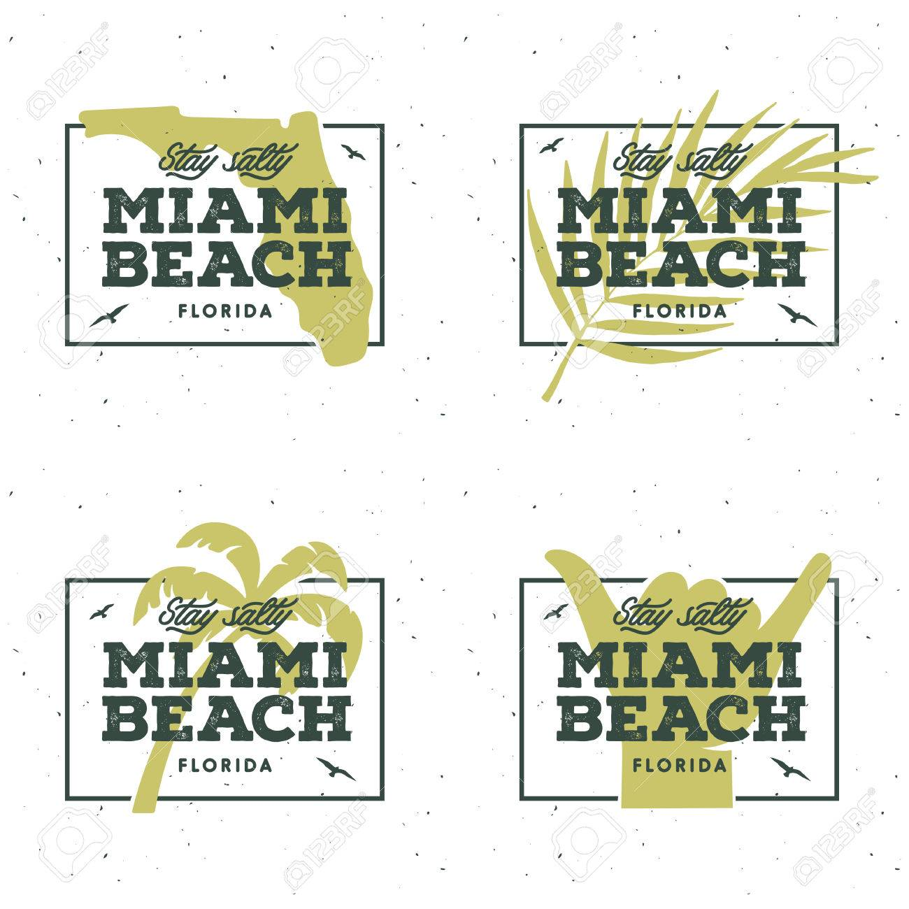 Miami Beach Florida T Shirt Graphics Summer Vacation Related Apparel Design Stay Salty
