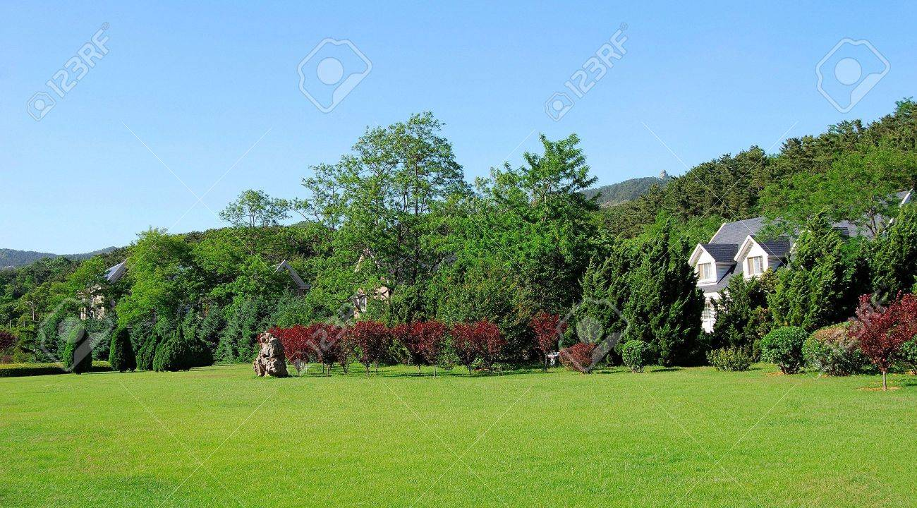 Four houses. Front yard. Summer. Dalian, China. Stock Photo - 5352889